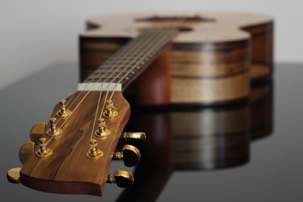 Jenny Biddle's Self-Made Guitar